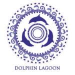 Motif Dolphin Lagoon resized