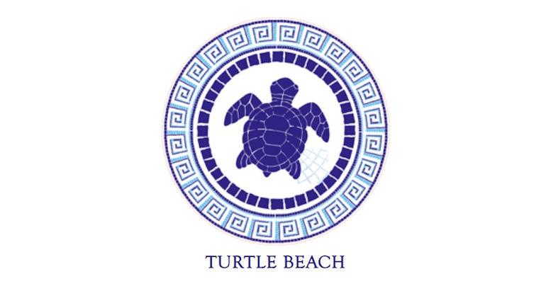 Motif Turtle Beach resized