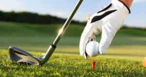 elea golf6
